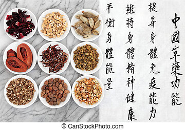 Chinese Medicine - Traditional chinese herbal medicine with...
