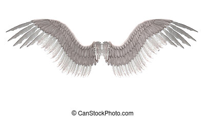 Angel wings - Digitally rendered image of white feathered...