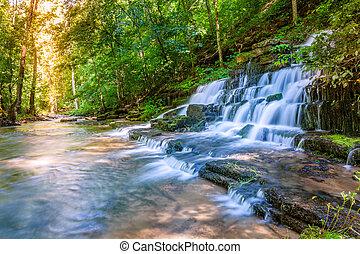 cascada, bosque, corriente