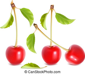 Basic RGB - Photo-realistic vector illustration of ripe red...