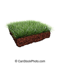 piece of grass - piece of green grass on squared soil shape