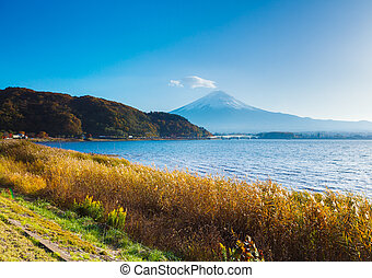 Mt Fuji and lake
