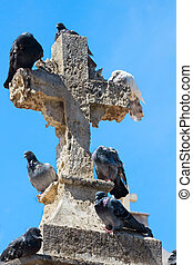 Pigeons on cross - Pigeons sitting on the cross at Agios...