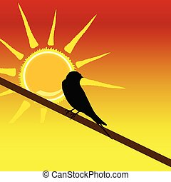 sparrow on the branch art color vector illustration