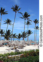 Stunning Punta Cana Beach - The stunning beach front of a...