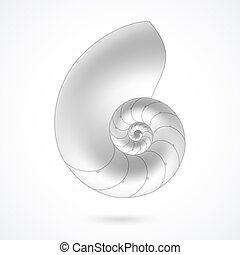 Nautilus shell illustration