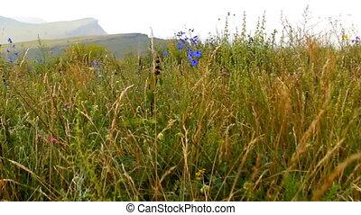 Khakassia chest panorama steadicam - Mountain Ridge Chests -...
