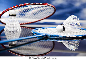 Shuttlecock on badminton racket