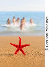 starfish on the beach at sunrise with girls on BG - Starfish...