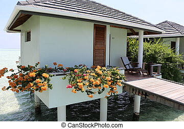 water bungalow. Maldives - nice water bungalow on Sun Island...