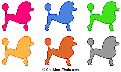 colorful poodle icon - set isolated colorful poodle icon