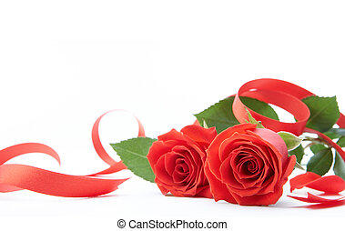 two roses and ribbon on white background