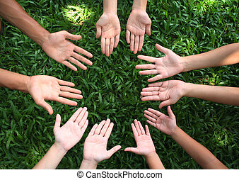 Multicultural hands on green grass