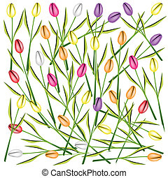 Set of Fresh Tulip Flowers Background - Beautiful Flower,...