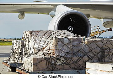 Cargo airplane - Loading of cargo to the freight aircraft.
