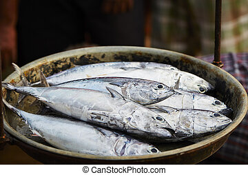 Fish market - Catch on the traditional fish market in Sri...