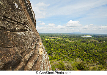 Sigiriya - View from Sigiriya in Sri Lanka. Sigiriya is on...