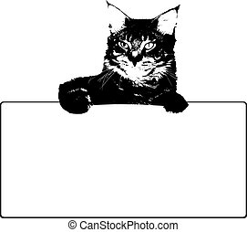Black cat with frame. Vector background illustration