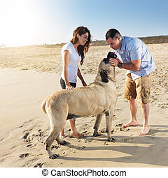 couple playing with pet dog.
