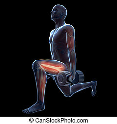 Leg workout - 3d rendered illustration of a man doing a leg...