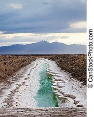 Chloride - Amboy, Chloride area, USA. Example of chloride...