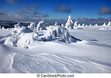 Deep snow - Winter landscape - snow covered trees.