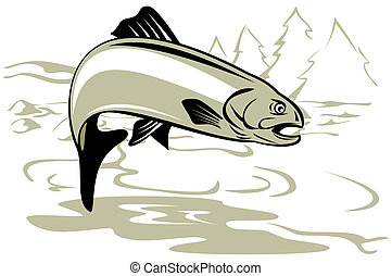 Trout jumping - Illustration of a trout