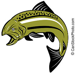 Speckled trout - Illustration of a trout fish