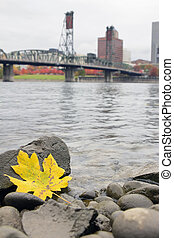 Fall Season Along Willamette River Portland Oregon - Fall...