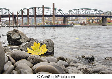 Fall Season Along Portland Willamette River by Marina - Fall...