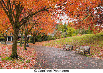 Walking and Biking Park Trails in Fall - Walking and Biking...