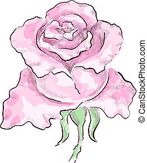 Pink rose - Decorative pink rose drawn by hand on graphic...