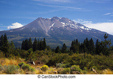 Hot Summer Day Weed California Base Mount Shasta Mountain -...