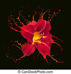 red flower splashes - bright flower with red splashes on...