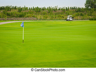 Sport view landscape green grass pattern and golf cart and...