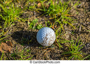 lonely abandoned golf ball