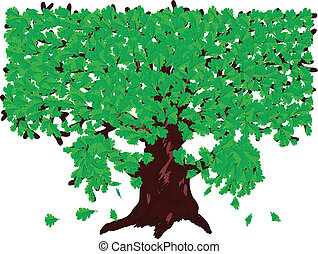 Oak with green leaves