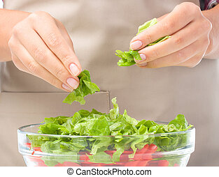 Cook is tearing lettuce while making salad - Cook is tearing...