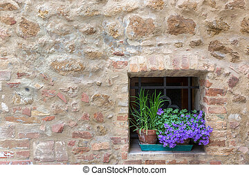 Old Tuscany building with flowers, Pienza, Italy