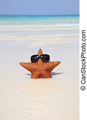 Funny starfish with sunglasses on tropical beach background