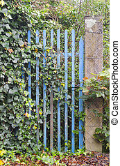 abandoned blue gate