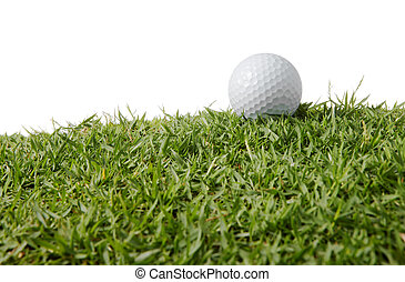 golf ball on grass - close up of a golf ball on grass