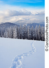 Path in the snow - Winter landscape with a footpath on the...