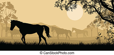 Herd of horses background - Herd of horses silhouette on...