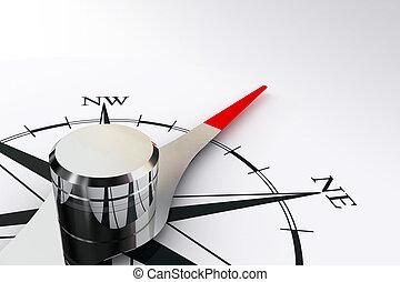 compasso, rosÈ, Magnético, agulha