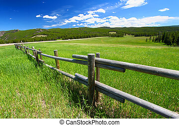 Bighorn National Forest Fenceline - Old wooden fenceline in...