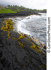 Lava shore - Shore made of black lava and ocean waves on Big...