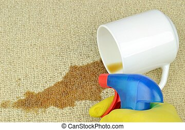 Cleaning a stained carpet - Removing a coffee stain from a...