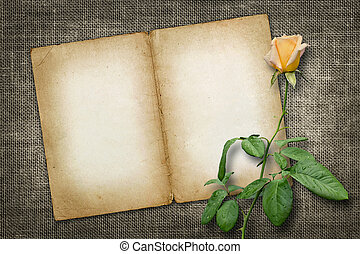 Card for invitation or congratulation with yellow rose in...