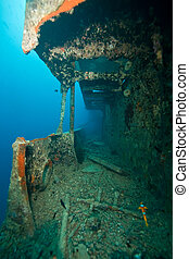 starboard gangway of the Thistlegorm - Wreck Thistlegorm...